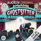 Ghostsitter 11: Eisige Stille