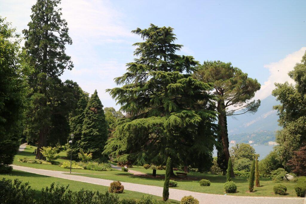 Comer_see-bellagio-park