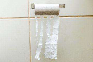 Leere Toilettenpapierrollen