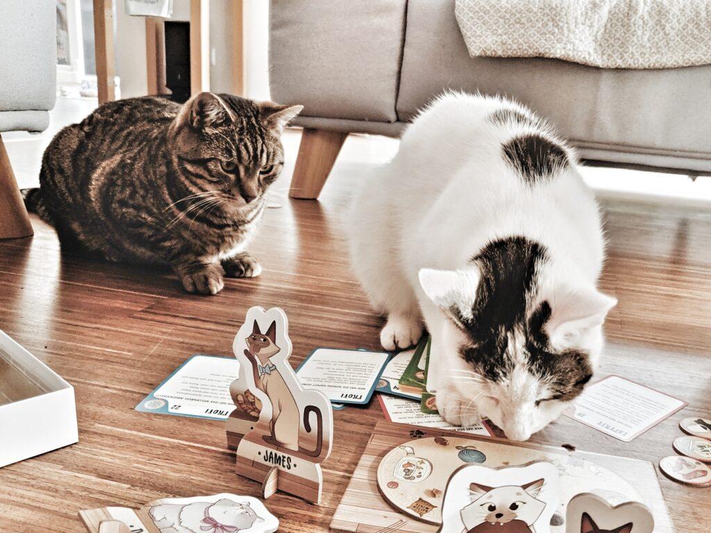 Thinkfun Cat Crimes Tatort