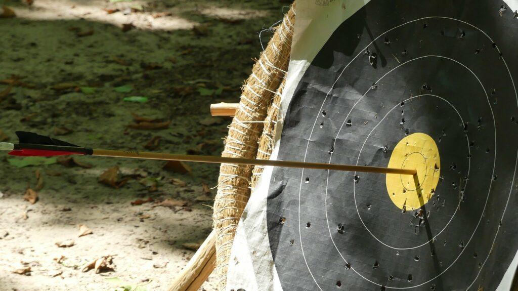 Beim Bogenschießen gibt es verschiedene Ziele, klassische Scheiben oder 3D-Ziele