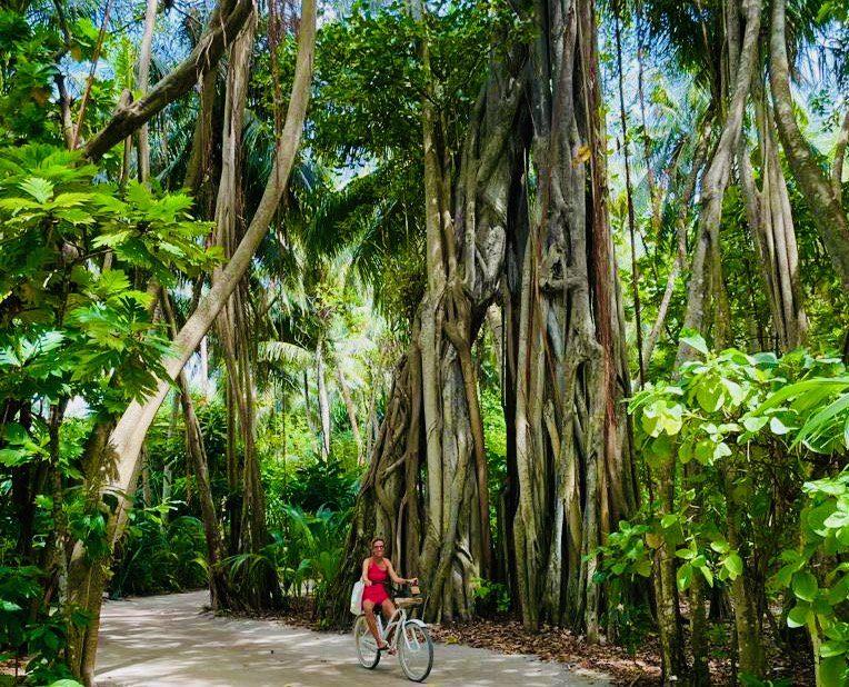 Eine Barfuß-Fahrrad-Tour wird auf Amilla Maldives zu einem Abenteuer.