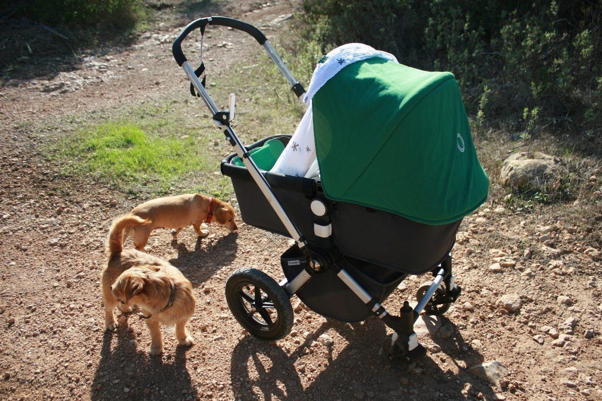 Ausfahrt mit Kinderwagen