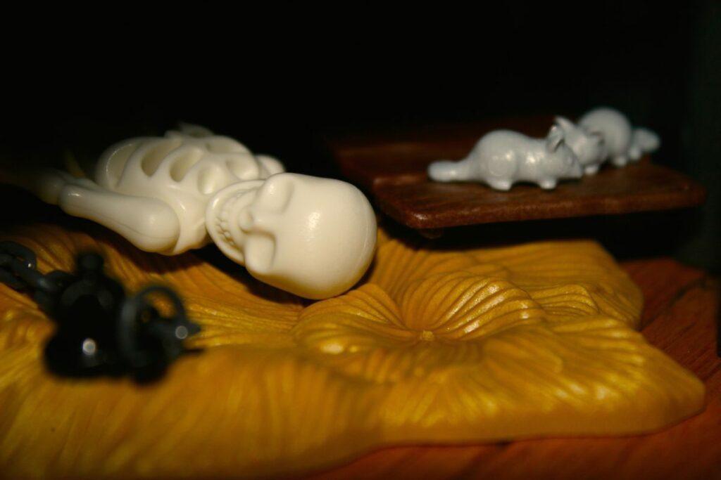 Playmobil Daddylicious Castle Skelett