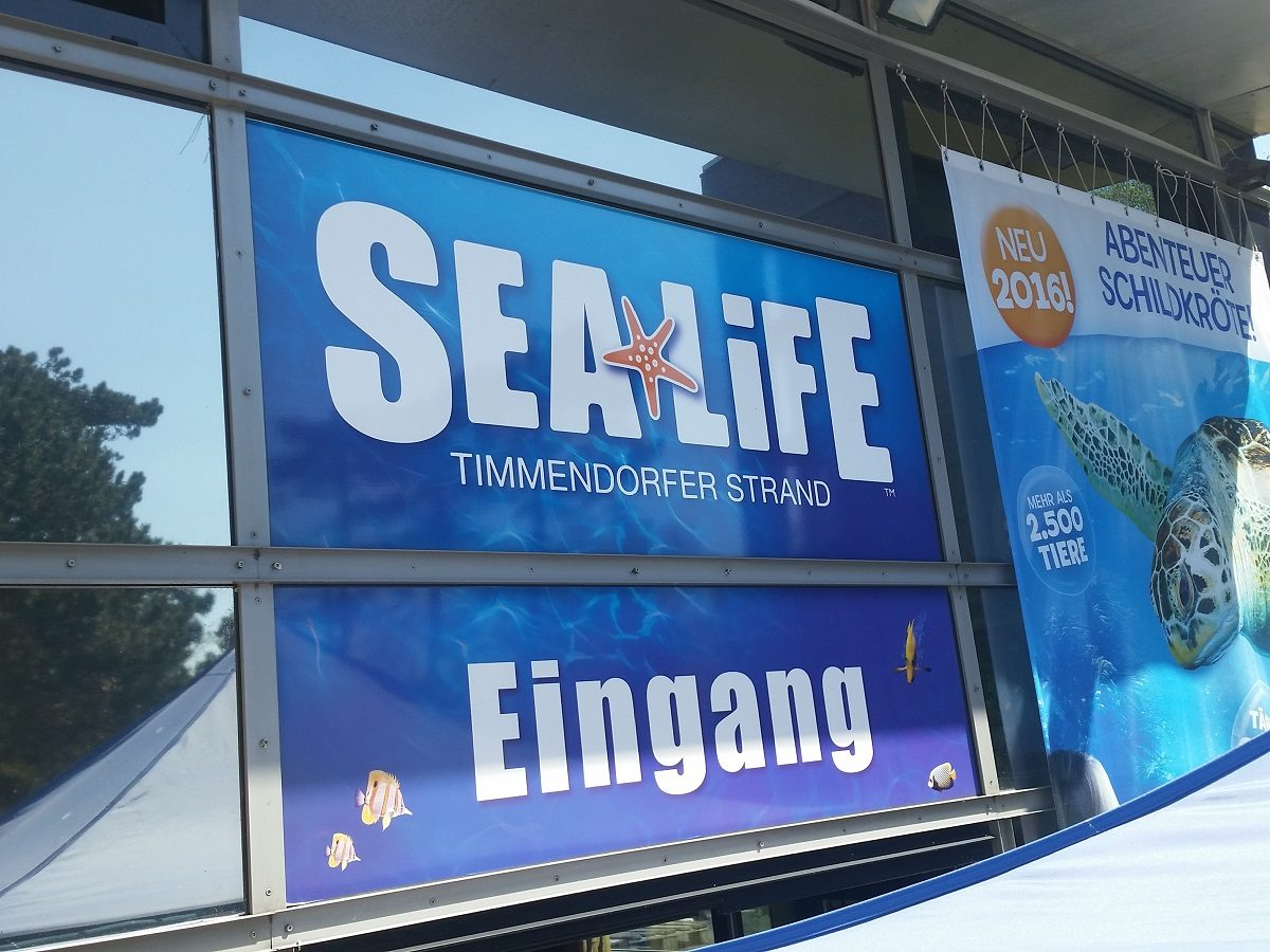 Besuch im Sea Life Timmendorfer Strand - DADDYlicious