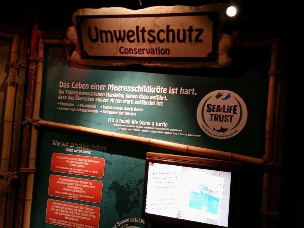 sea life timmendorfer strand naturschutz