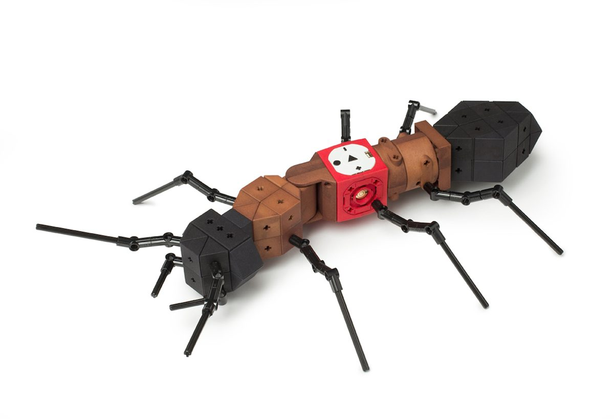 tinkerbots ant Header